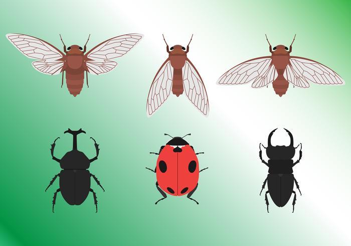 Conjunto de insectos tropicales