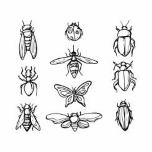 Gratis Sketch Insect Icon Vector