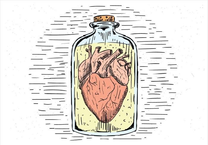 Gratis handdragen vektorhjärta i en burk