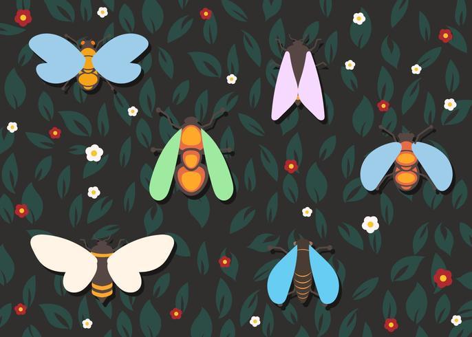 Set Of Colorful Cicada