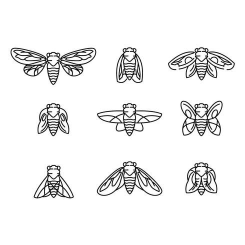 Fly and Cicada Vector Lineart