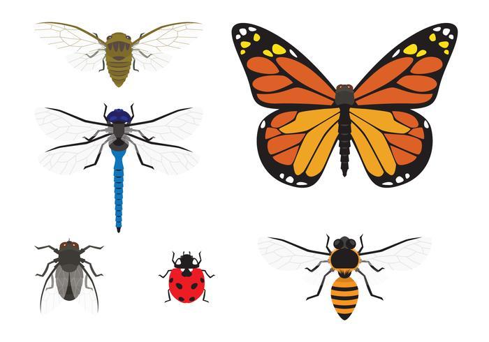 Conjunto de vectores de insectos