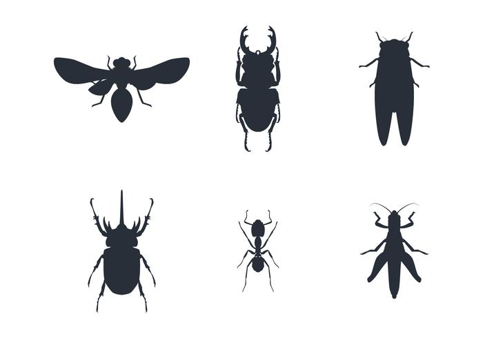 Insect Silhouette Set