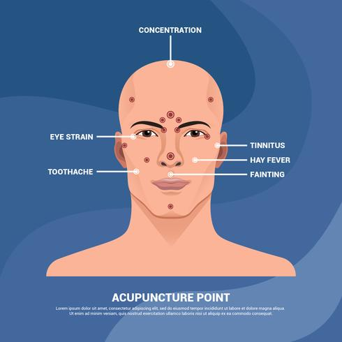 Acupuncture Point in Man Face Vector Illustration