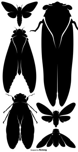 Vector Cicada Bug Silhouette Set