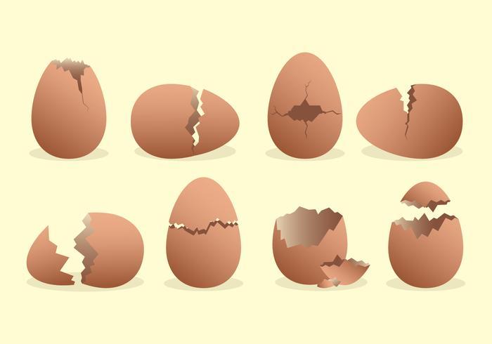 Broken Egg Icons Set