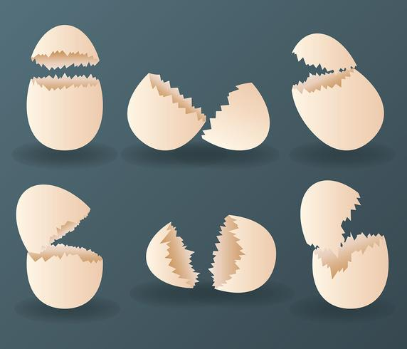 Broken Egg Vector Icon