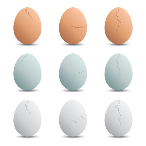 Cracked Egg Vectors Download Free Vector Art Stock Graphics Images