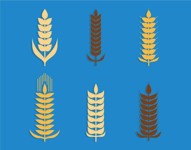 Conjunto de vectores de orejas de trigo