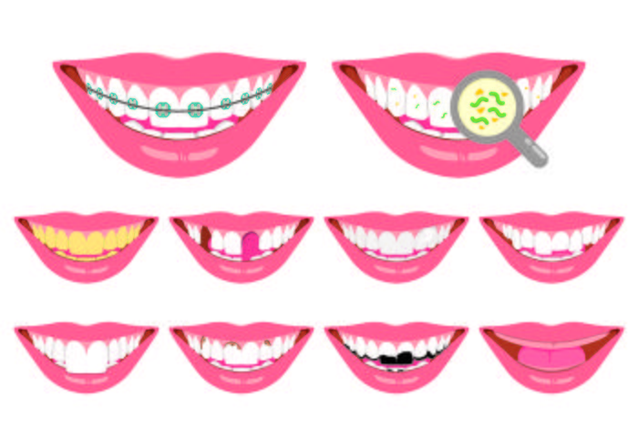 Set Of False Teeth Icon vector