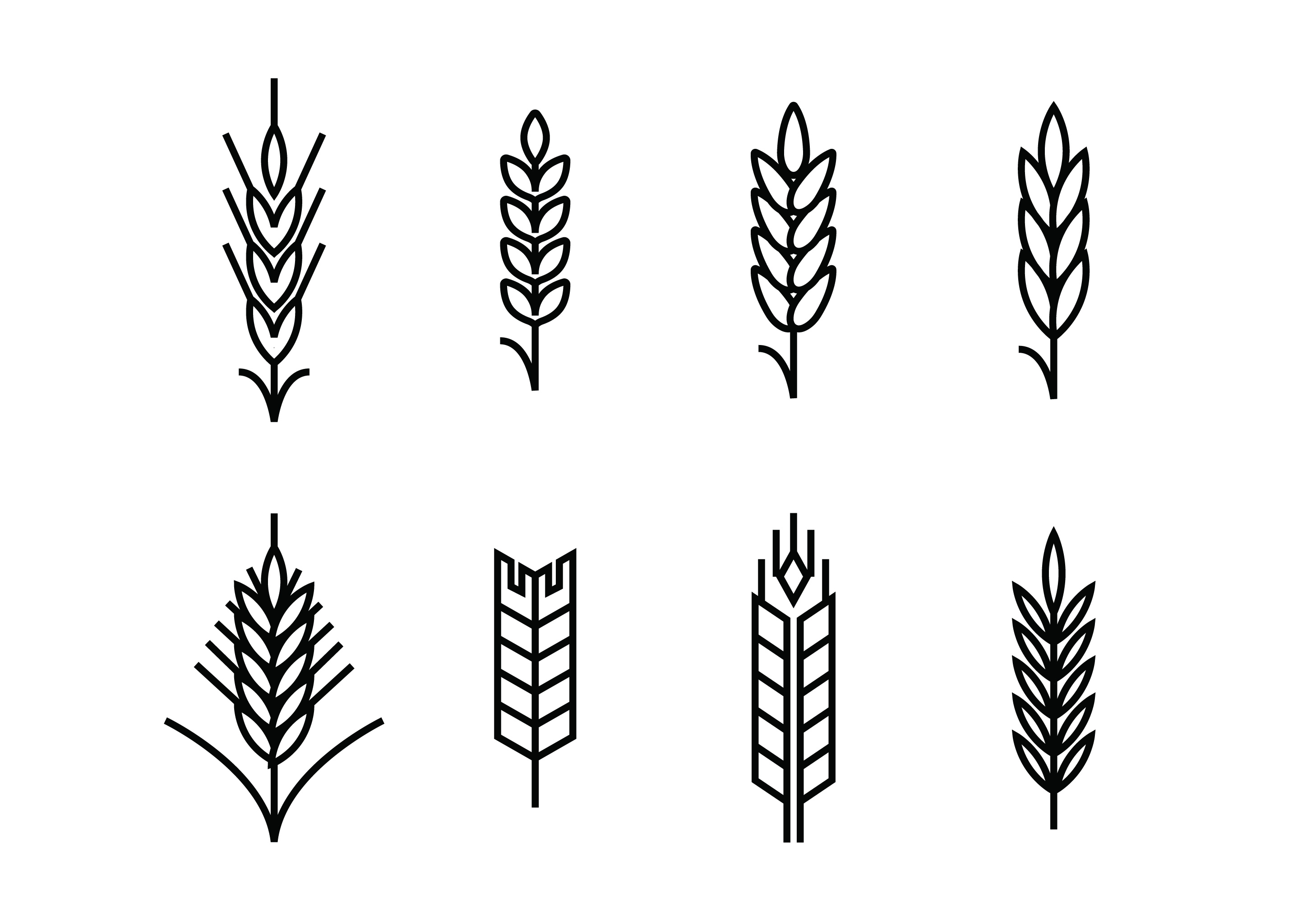 Wheat Ears Set Icons Download Free Vectors Clipart