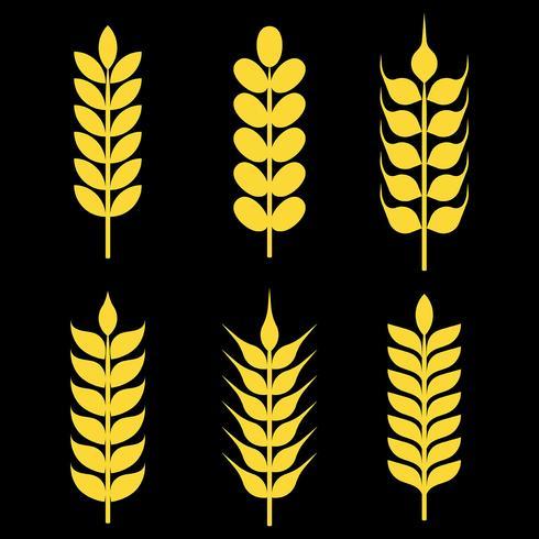 Wheat Ears Vector Icons