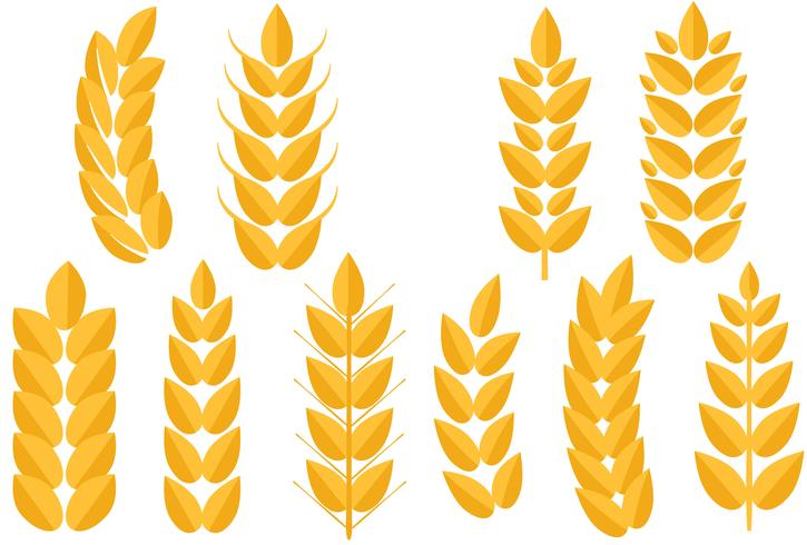 Free Wheat 2 Vectors