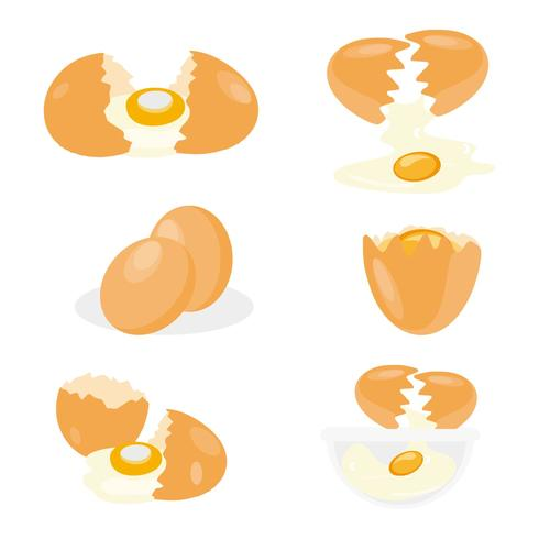 Gratis Broken Chicken Egg Vector