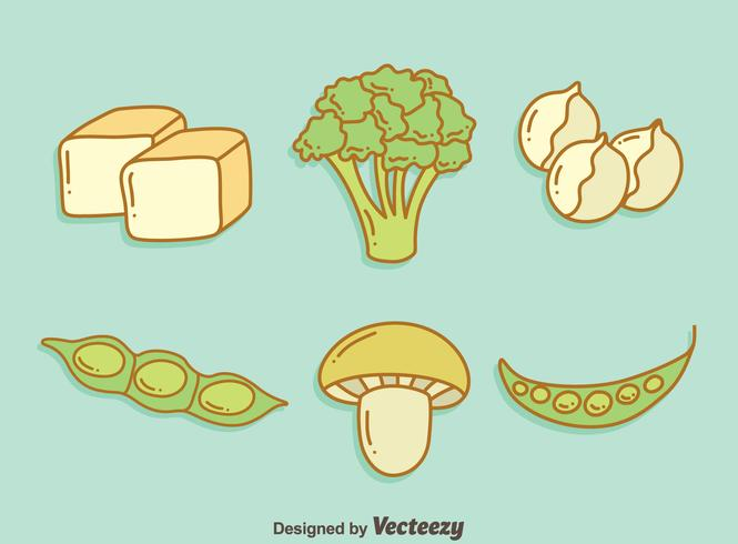 Vegan Protein Vegetable Vector