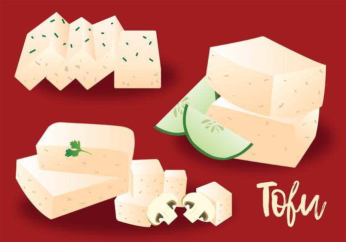 Pack de vecteur de tofu