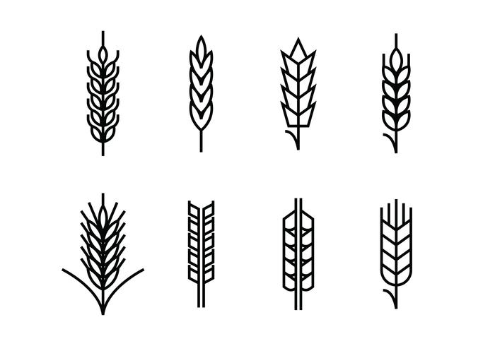 Wheat ears set icons