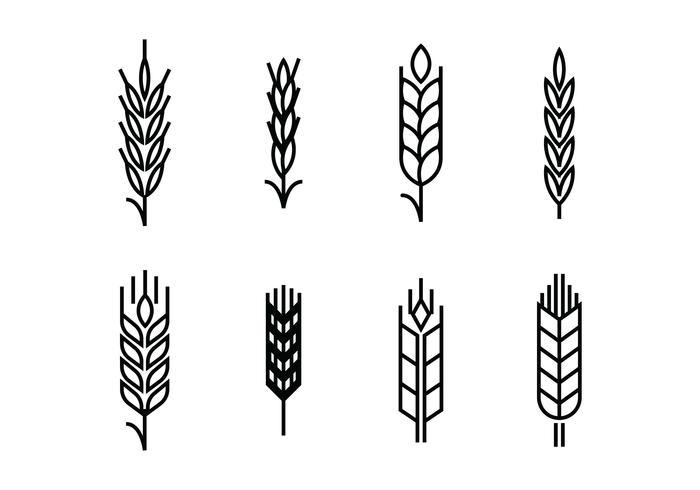 Wheat ears set icons