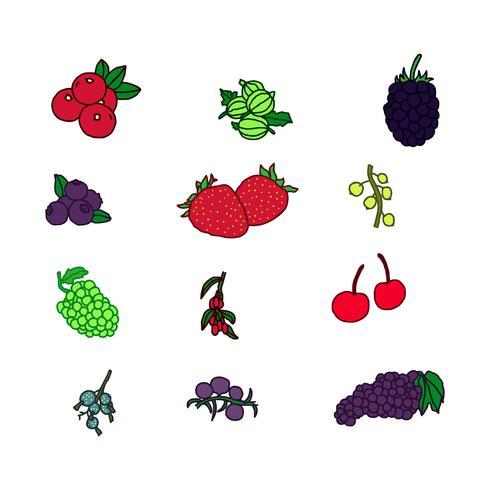 Vectores de frutas de bayas