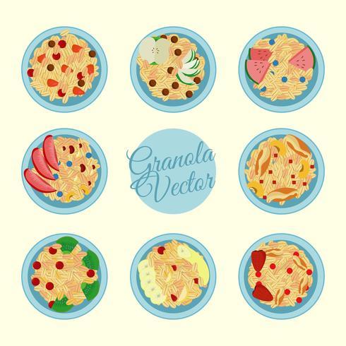 Granola i en skål vektor