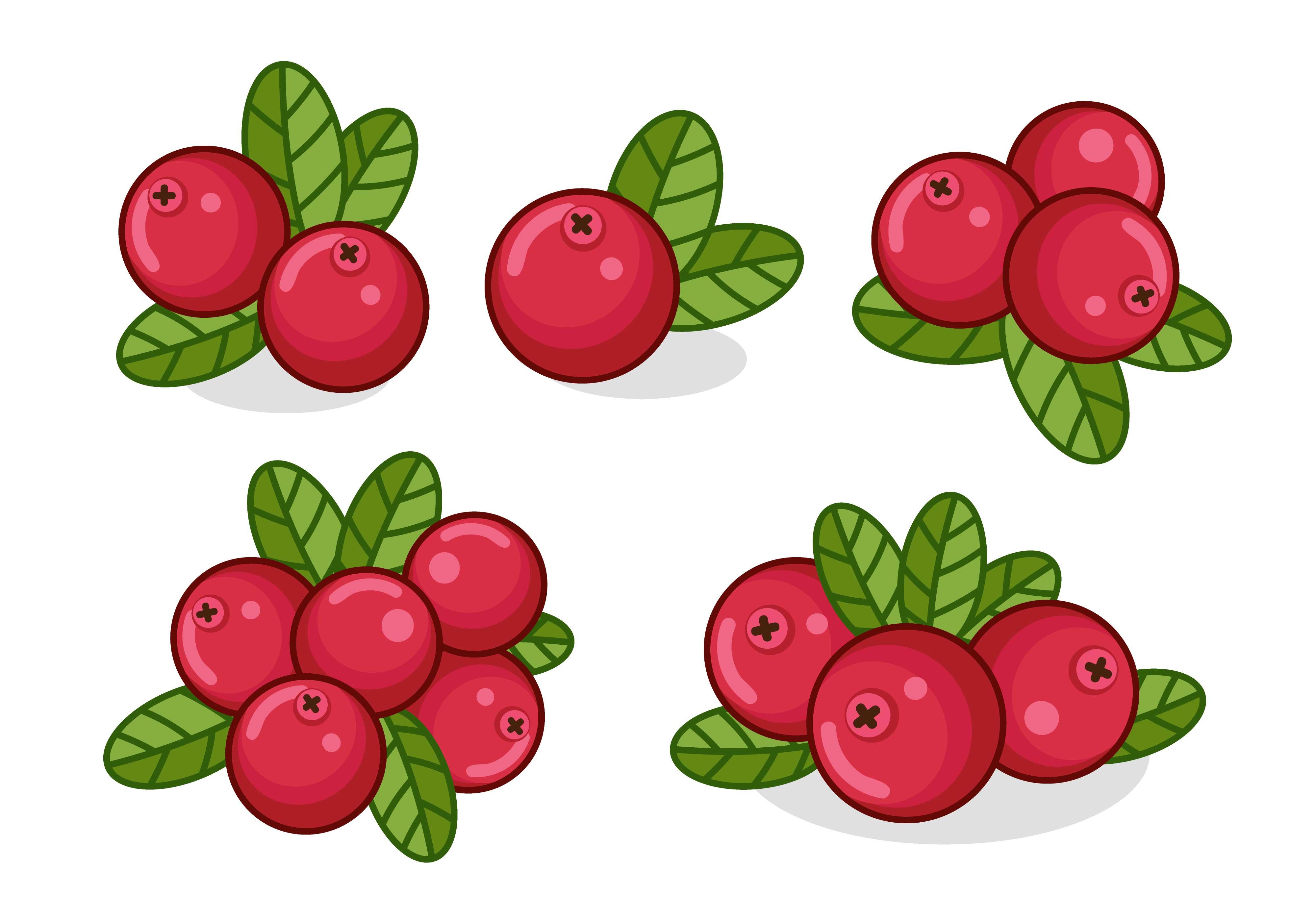 того чтобы ягоды картинки в векторе они жестких