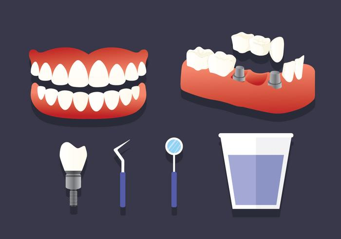False Teeth Elements Vector