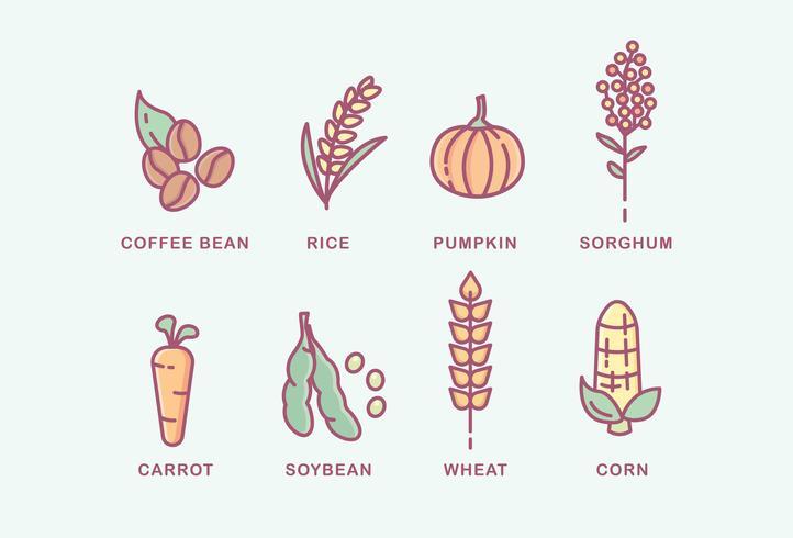 Vários tipos de plantas
