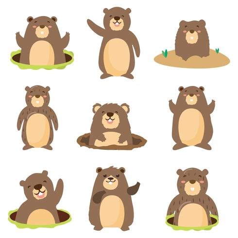 Flat Gopher with different Pose Vector