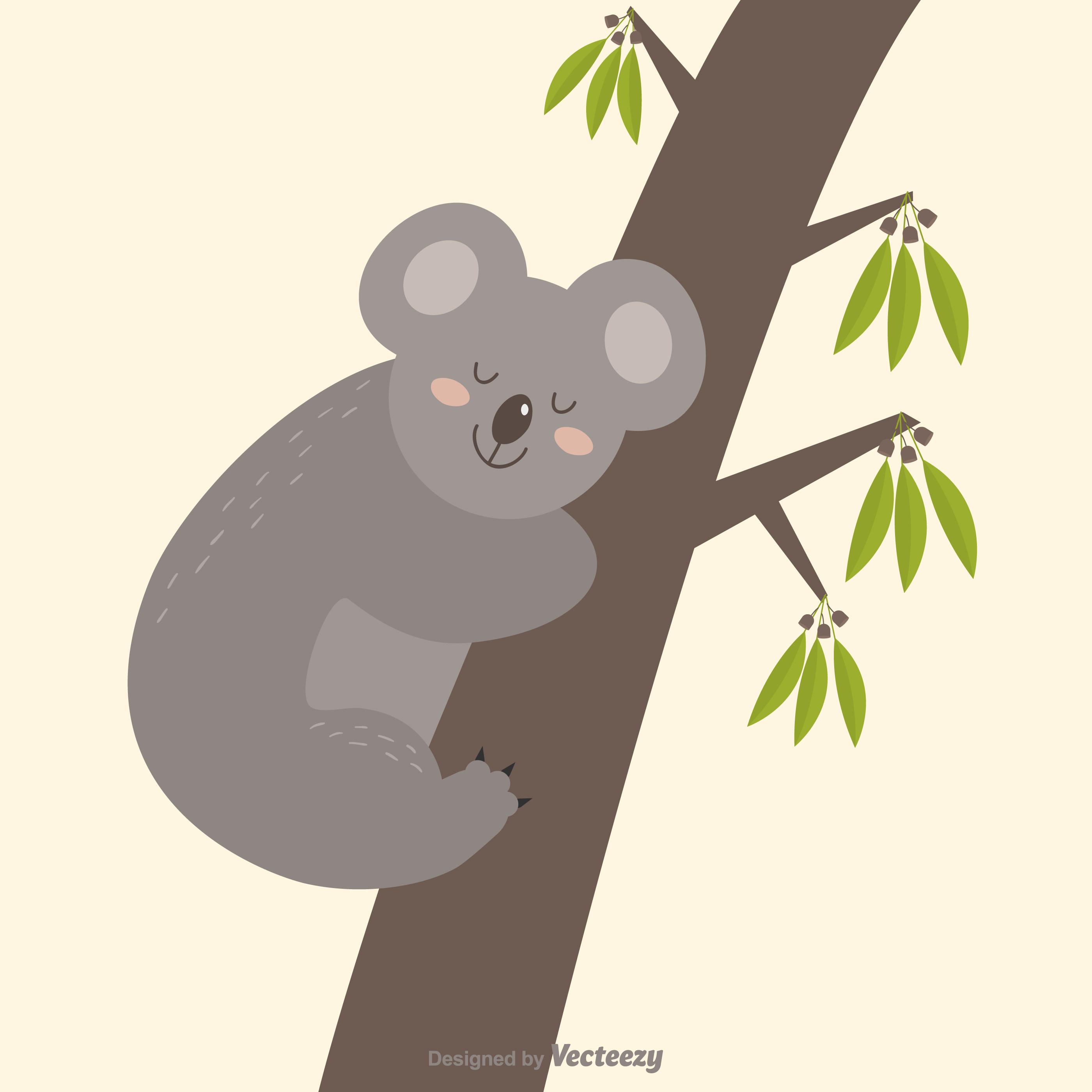 Lindo koala australiano durmiendo en un vector de árbol de goma ...