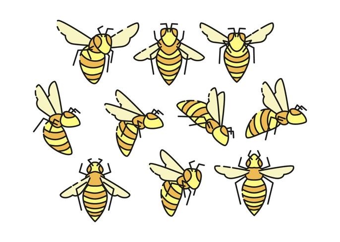 Free Hornets Icon Collection Vector