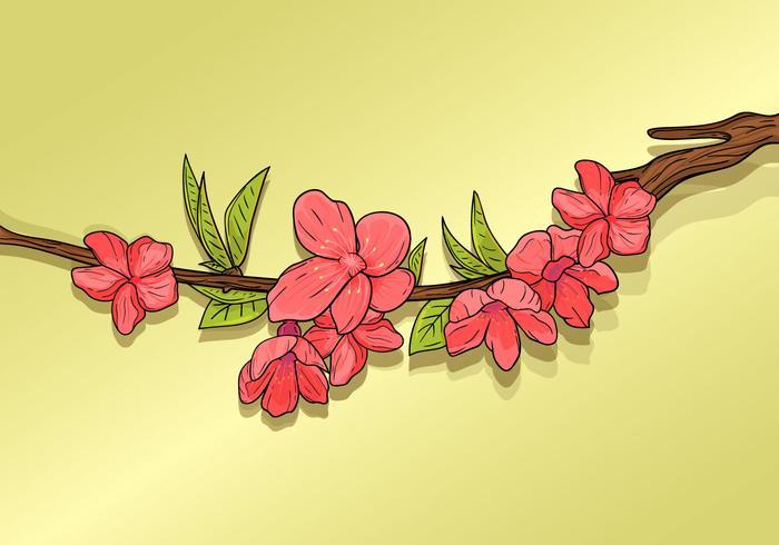 Hermosa flor de ciruelo vector