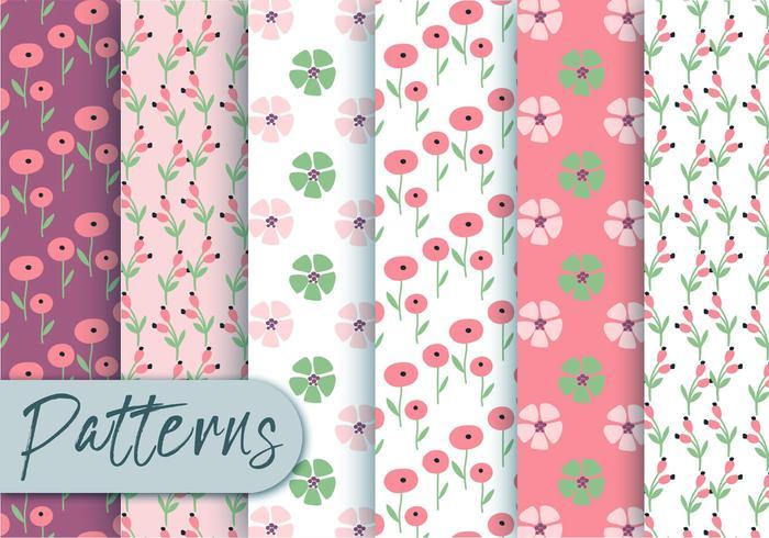Conjunto de patrón de flora de primavera