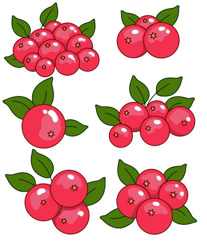 Vektor Cranberry Icon Set