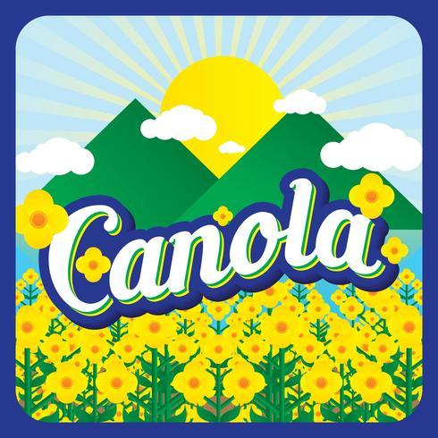 Canola Vector illustratie achtergrond