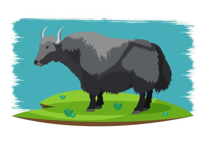 Ilustración vectorial Yak