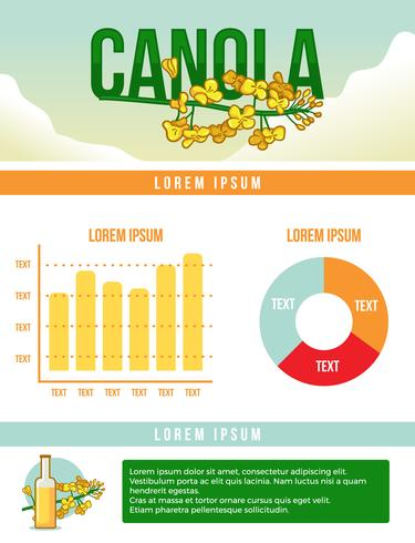 Canola infographic mall
