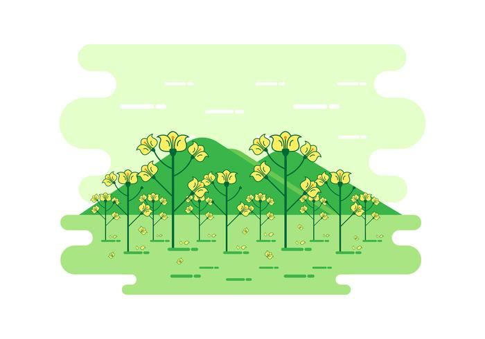 Cartoon Canola Landscape Vector