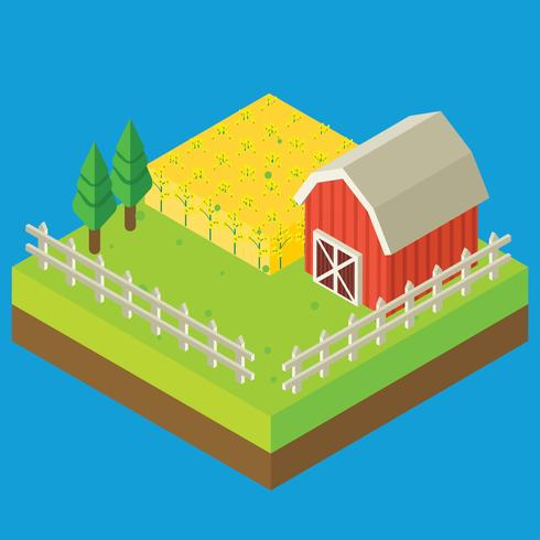 Canola Isometrische boerderij veld Vector