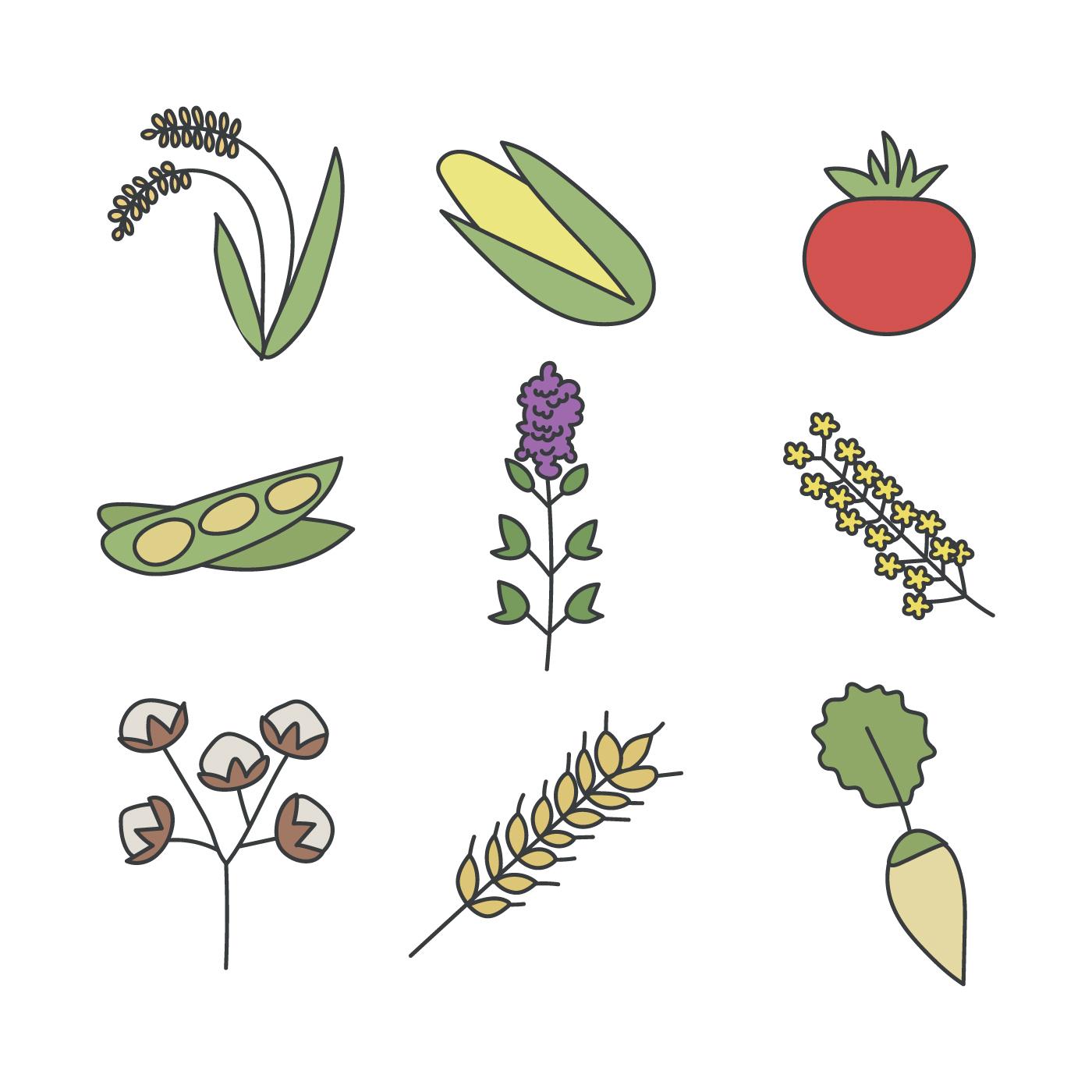 Non Gmo Greens And Vegetable Vectors