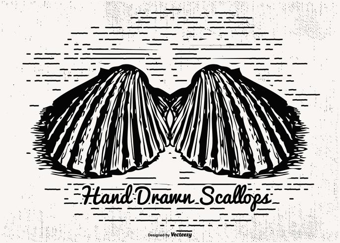 Sketchy Hand Drawn Scallops Illustration