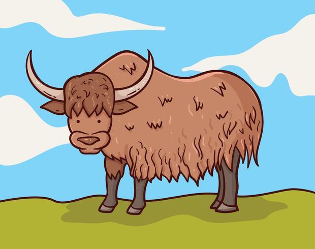 Yak en la ilustración de la hierba