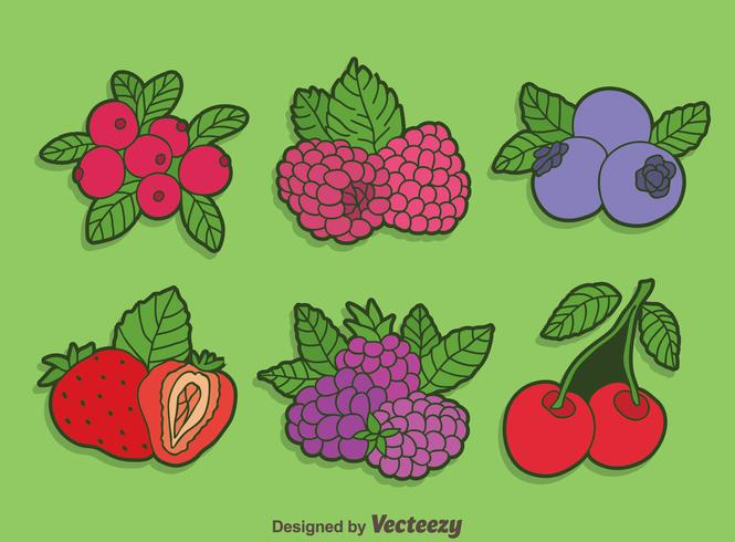 Bright Berries Fruits Collection Vector
