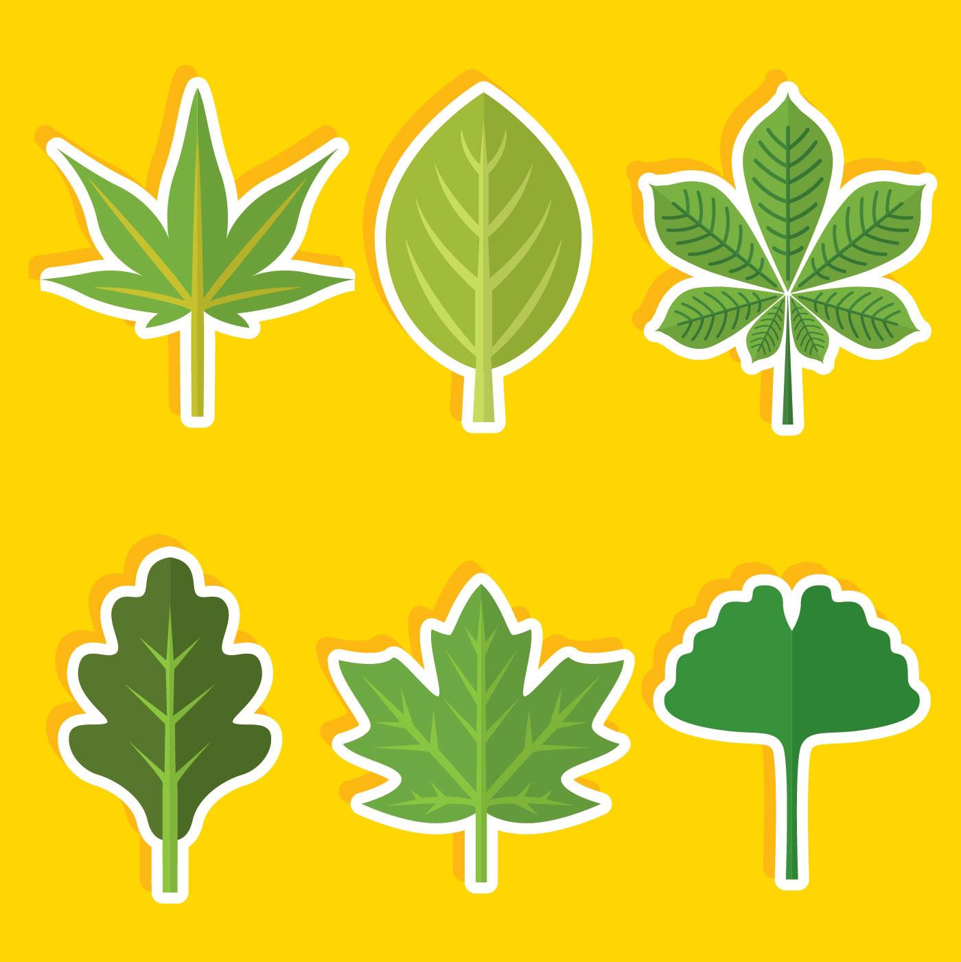 Flat Tree Green Leaves Vector