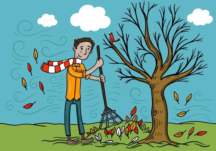 Hombre rastrillar hojas de otoño Vector