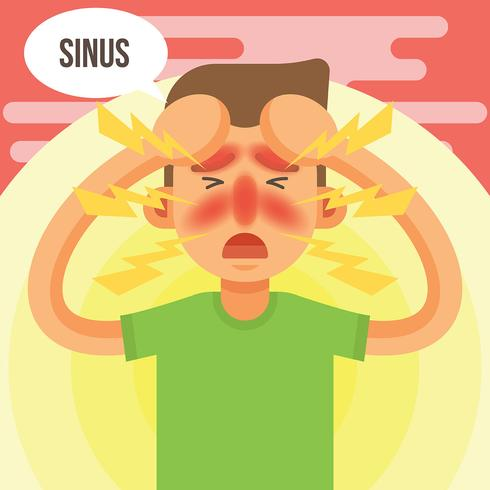 Sinus Vector Illustration