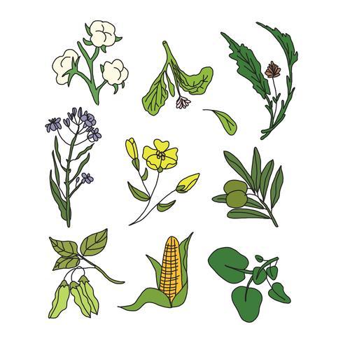 Pflanzen Doodle Vektoren
