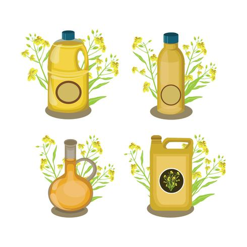 Canola Oil Collection