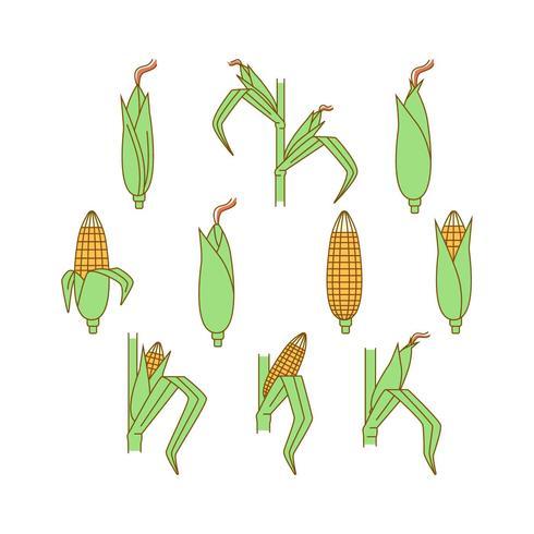 Gratis Corn Plants Vector