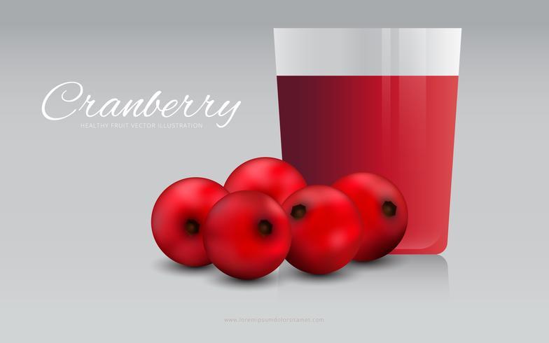Cranberries Juice Illustration