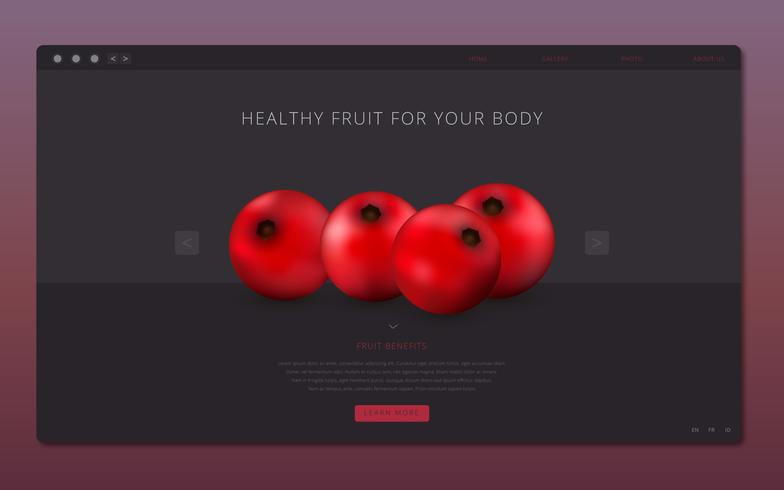 Cranberries Healthy Fruit Illustration Web Template